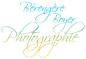logo_bb-photographe-_professionnelle